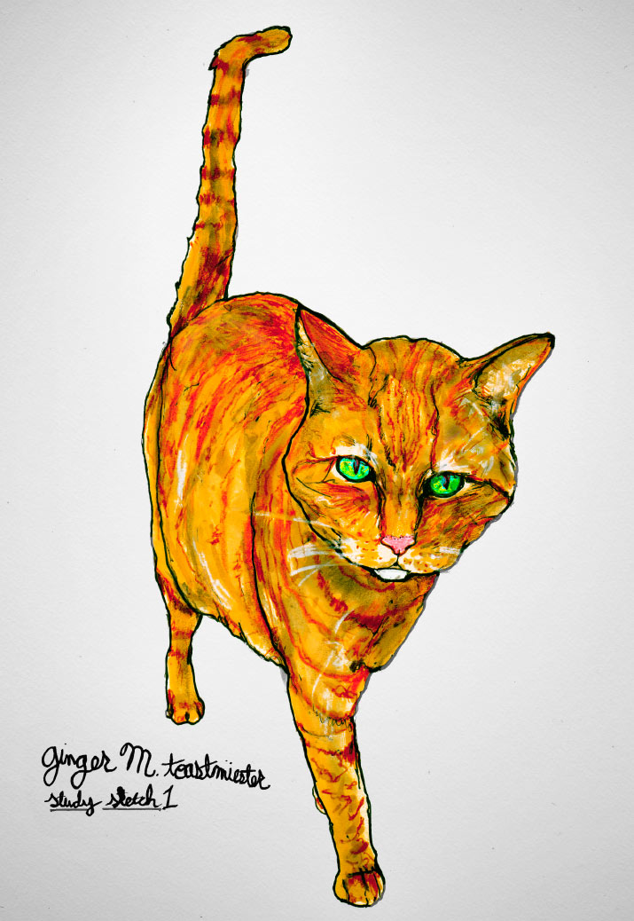Artist Danny Roberts Concept sketchs for Ginger Marmalade Toast Miester of his cat milo