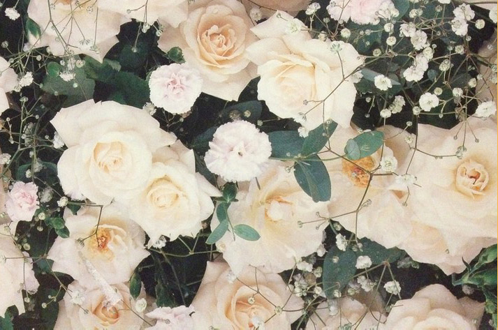Inspiration friday image from tumblr of beautiful white and pale pink roses